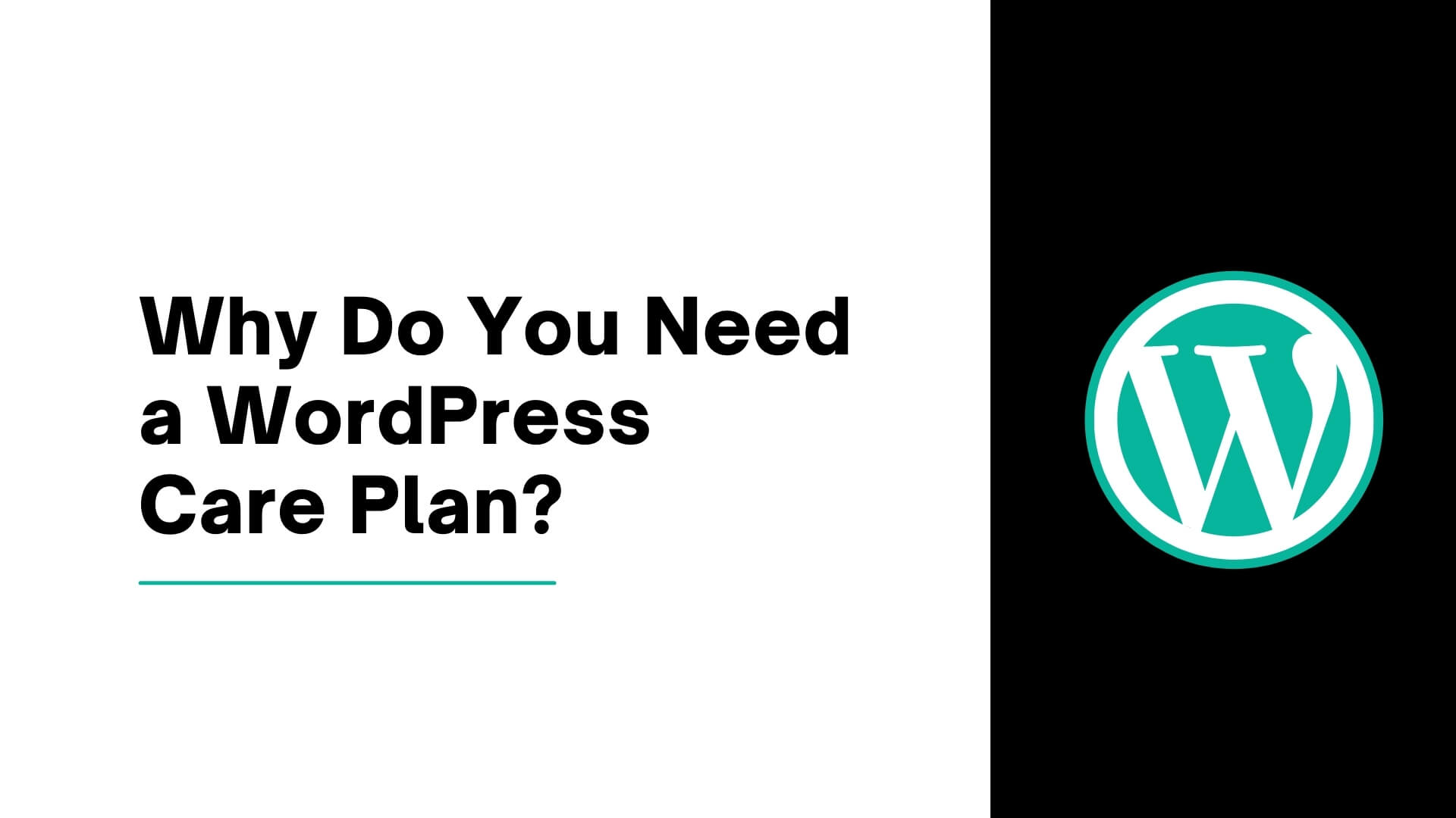 Why Do You Need a WordPress Care Plan